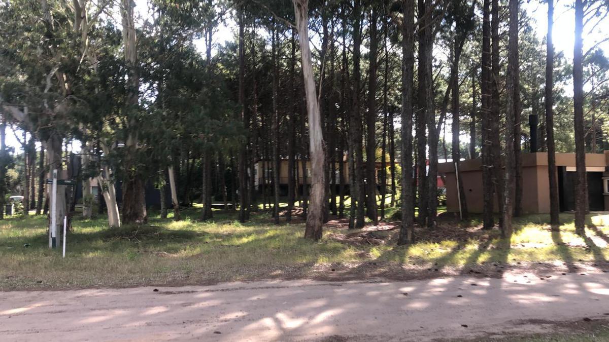Foto Terreno en Venta en  Pinamar Norte,  Pinamar  Selene esquina Etoneo