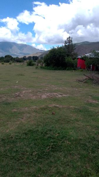 Foto Terreno en Venta en  Tafi Del Valle ,  Tucumán  Exc. Terreno en Tafi del Valle.( Los Castaño). 1000 m2.