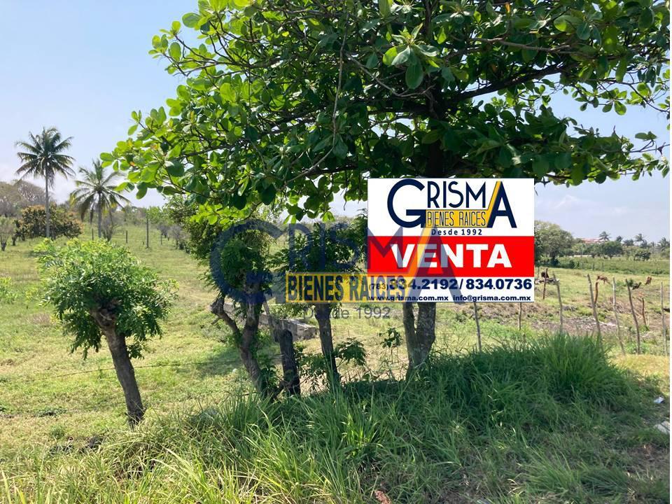 Foto Terreno en Venta en  Congregacion Sabanillas,  Tuxpan  PRECIOSO TERRENO A 15 MINUTOS DEL CENTRO DE TUXPAN