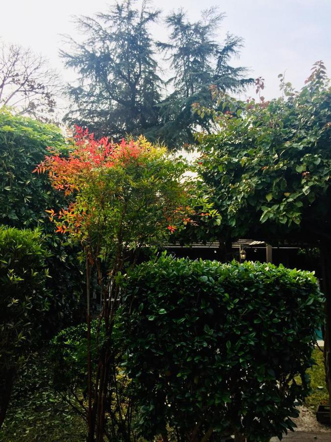 Foto Casa en Venta en  Prado ,  Montevideo  Br Artigas y Zapican - 3 Dorm, Fondo, Piscina, BBQ