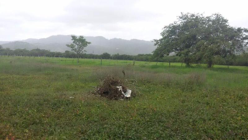 Foto Terreno en Venta en  El Zamoranito,  San Antonio de Oriente  Terreno Km 4 de Escuela Agrícola Zamorano ideal para inversionista.