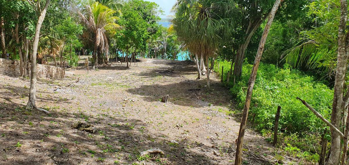 Foto Terreno en Venta en  Bacalar ,  Quintana Roo  Laguna de bacalar