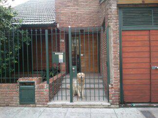 Foto Casa en Alquiler temporario en  Saavedra ,  Capital Federal  Manzanares al 4600