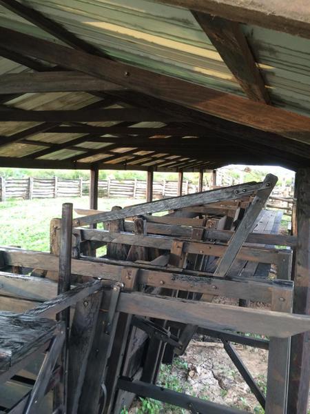 Foto Campo en Venta en  Villa Hayes,  Villa Hayes  ZONA RUTA FORTIN ROJAS SILVA, VILLA HAYES CHACO