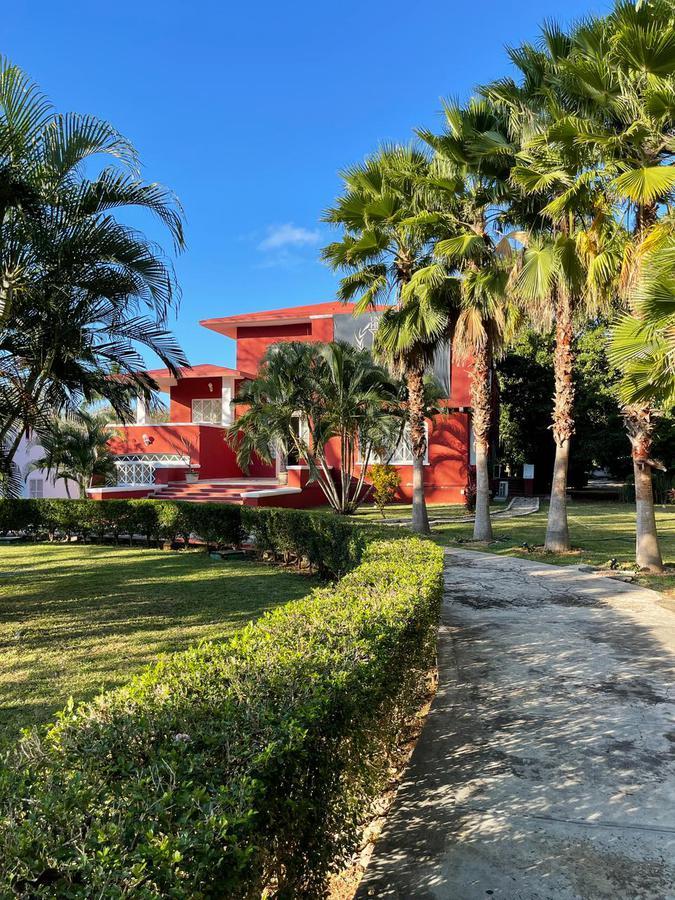 Foto Casa en Renta en  Martin Alcala,  Mérida  Casa en Renta -Mérida