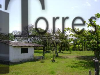 Foto Terreno en Venta en  La Rivera,  Tampico Alto  GRAN TERRENO BRECHA HUASTECA ZONA ZAPUPERA