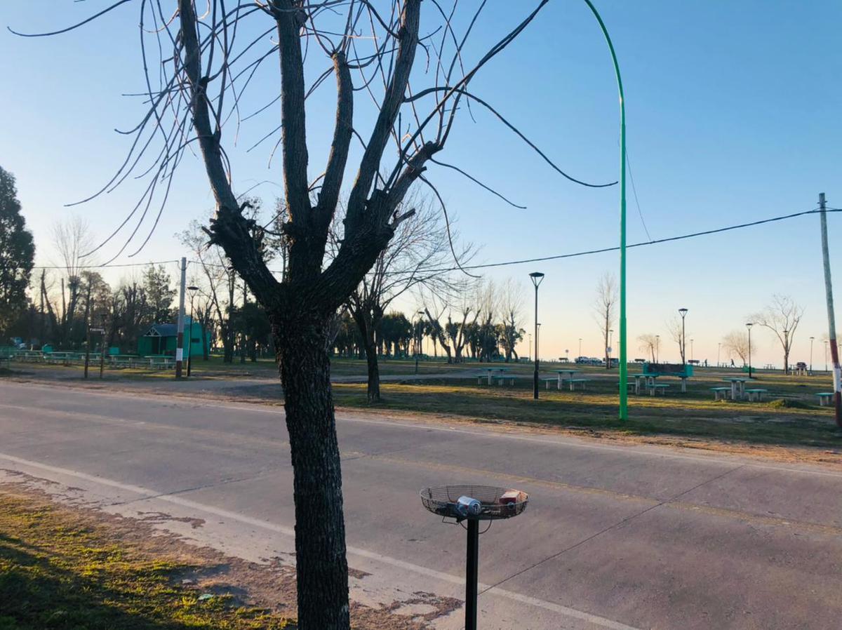 Foto Terreno en Venta en  Punta Lara,  Ensenada  Brown e/ 74 y 74 bis