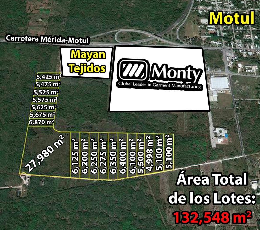 Foto Terreno en Venta en  Motul de Carrillo Puerto Centro,  Motul  Terreno de 13.2 Hectáreas m2 En Motul