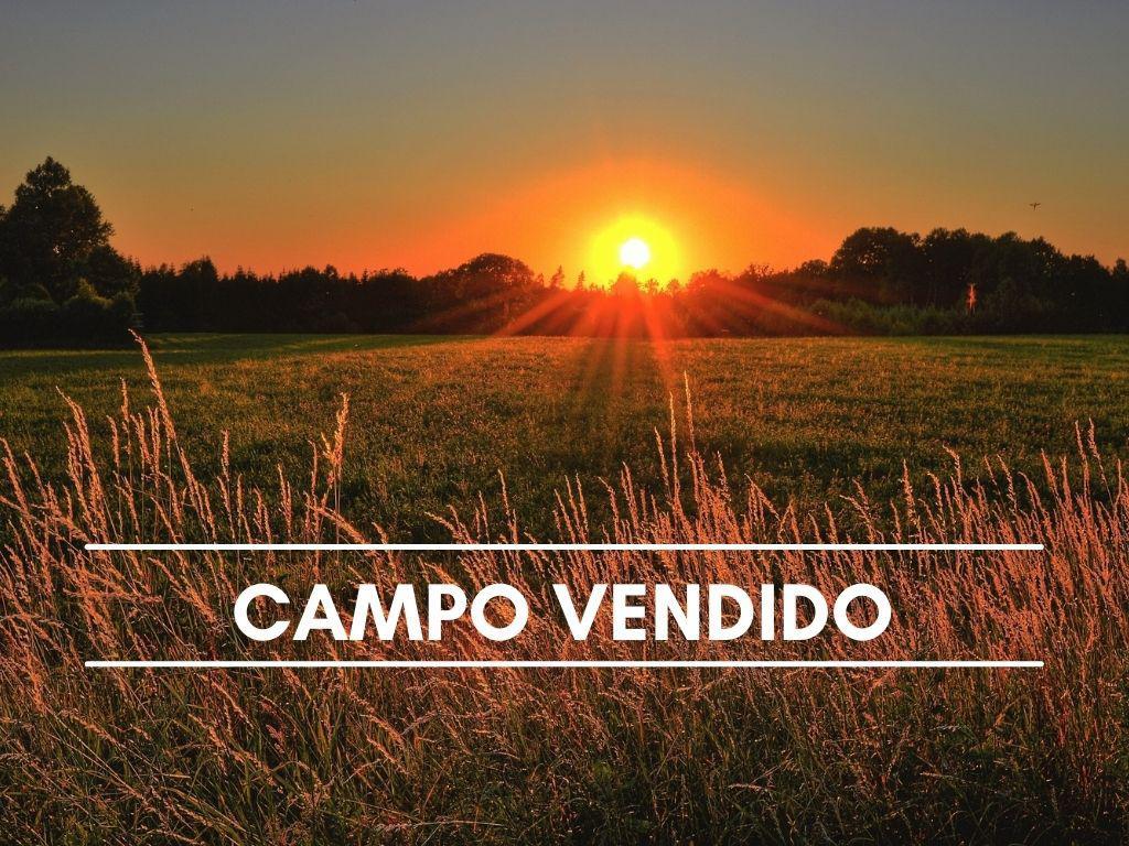 Foto Campo en Venta en  Pila,  Pila  Paraje La Victoria Partido de Pila