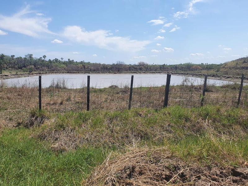 Foto Campo en Venta en  Villa Hayes ,  Presidente Hayes  Chaco