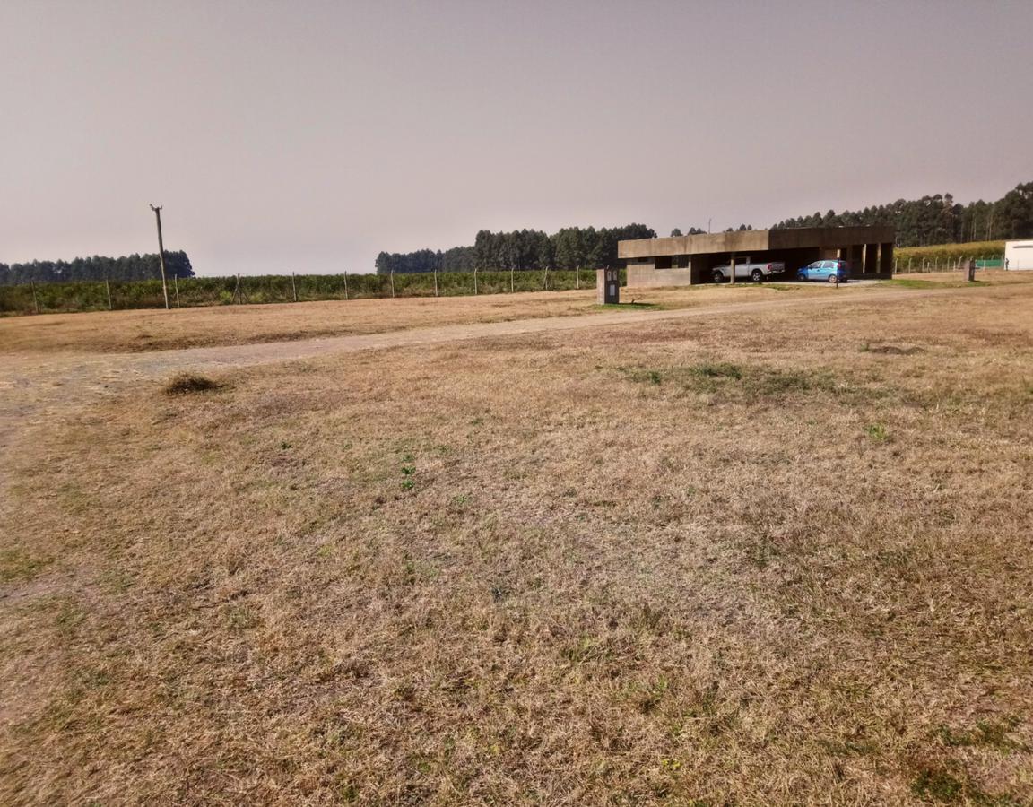 Foto Terreno en Venta en  Los Nogales,  Tafi Viejo  country portal del sol