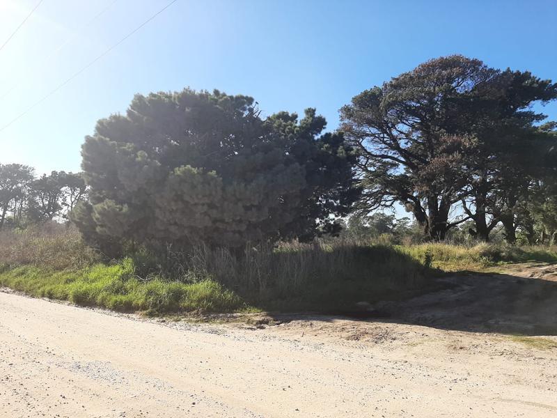 Foto Terreno en Venta en  Mar Del Plata ,  Costa Atlantica  Esteros del Iberá y calle 7 (Barrio Valle Hermoso)