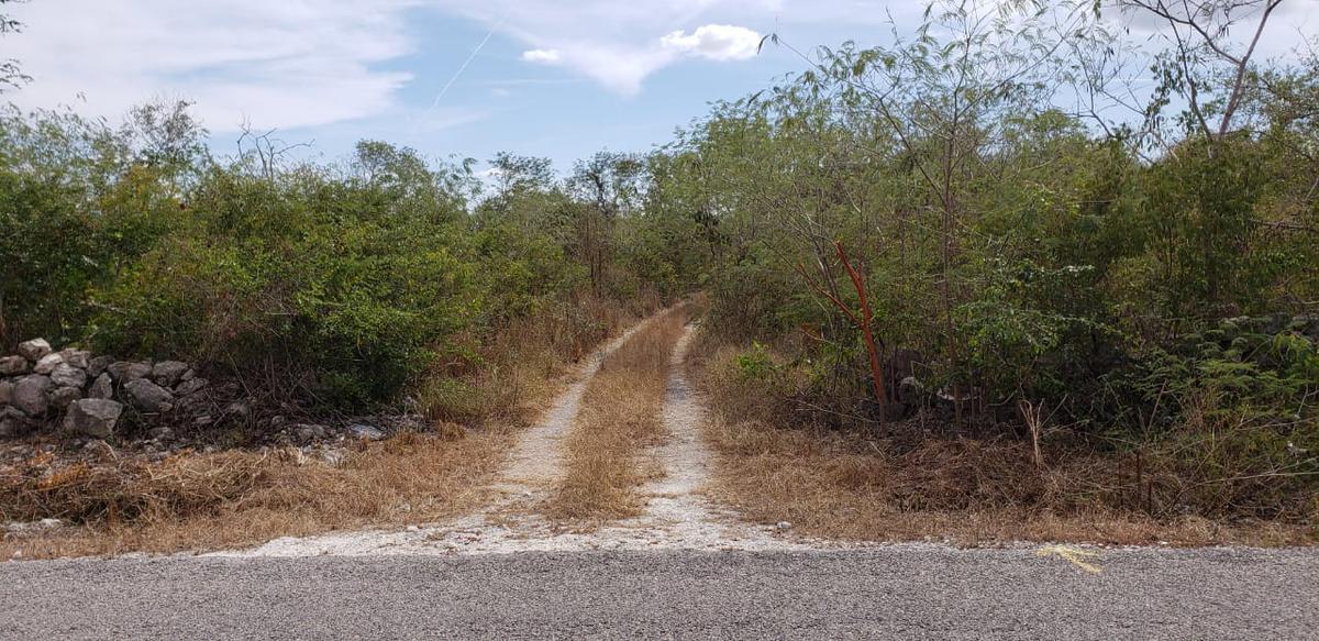 Foto Terreno en Venta en  Pueblo San Ignacio,  Progreso  Terreno de oportunidad en san Ignacio norte de Mérida