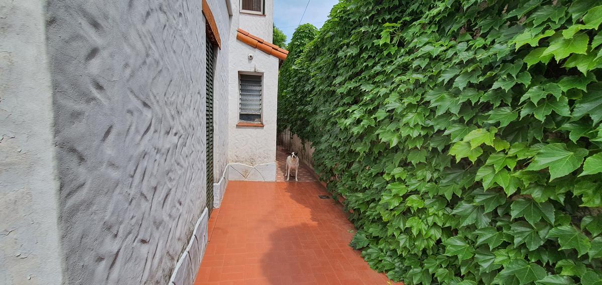 Foto Terreno en Venta en  Villa Devoto ,  Capital Federal  Bahia Blanca al 4500
