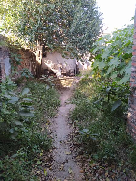Foto Terreno en Venta en  San Miguel De Tucumán,  Capital  terreno en venta suipacha  al 900