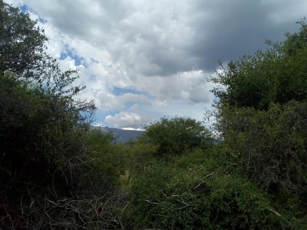 Foto Terreno en Venta en  Cruz De Caña,  San Javier  VENDO TERRENO CRUZ DE CAÑA TRASLASIERRA CORDOBA