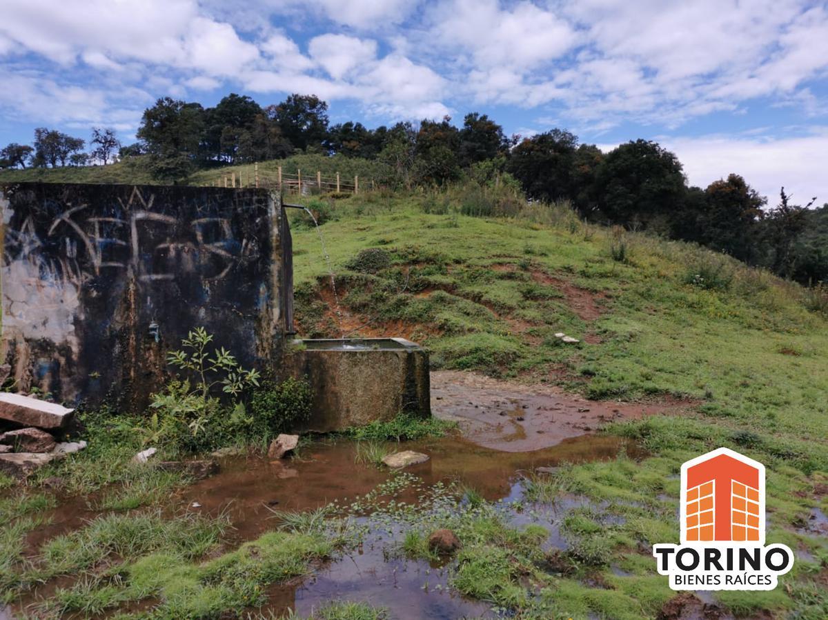 Foto Terreno en Venta en  Fraccionamiento La Martinica,  Banderilla  RANCHO CON NACIMIENTO DE AGUA 15MIL LITROS DIARIOS - BANDERILLA, VER.