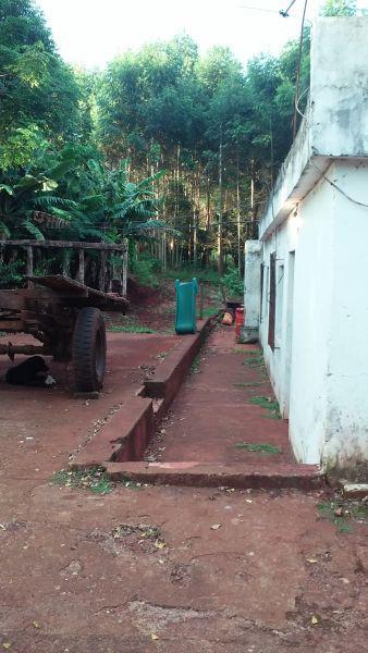 Foto Campo en Venta en  Capital ,  Misiones  RUTA 12 KM 47 LOCALIDAD HIPOLITO IRIGOYEN, CIUDAD JARDIN AMERICA, MISIONES