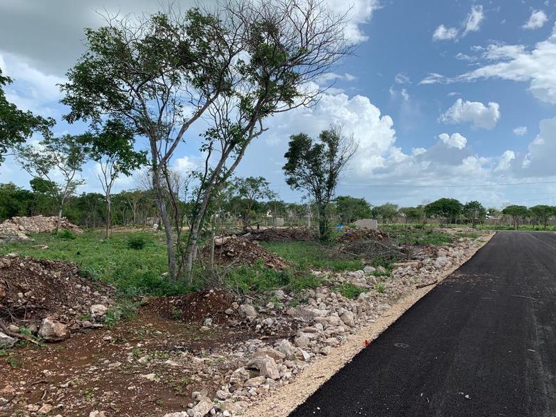 Foto Terreno en Venta en  Conkal ,  Yucatán  ARBIA