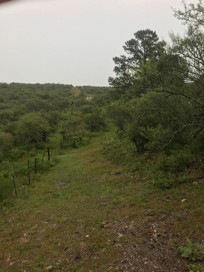 Foto Campo en Venta en  Villa Del Dique,  Calamuchita  Campo La Sierrita Villa Dique, Chacra 7