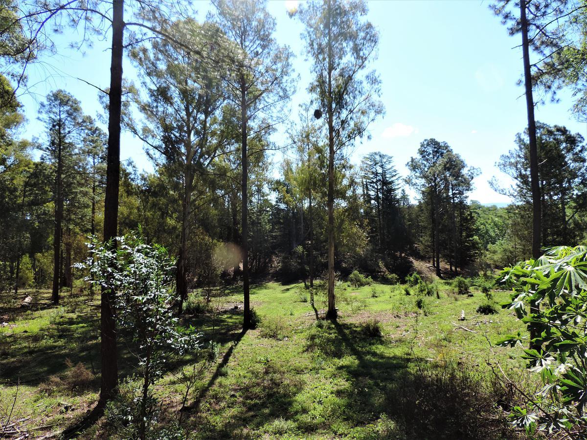 Foto Terreno en Venta en  Villa Ciudad De America,  Santa Maria  Ruta Provincial Nº5