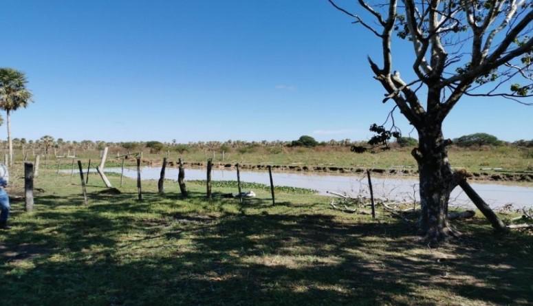 Foto Campo en Venta en  Villa Hayes,  Villa Hayes  Villa Hayes, zona bajo Chaco