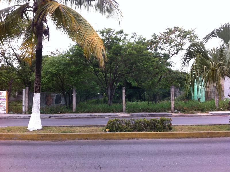 Foto Terreno en Venta | Renta en  Emiliano Zapata,  Cozumel  Emiliano Zapata