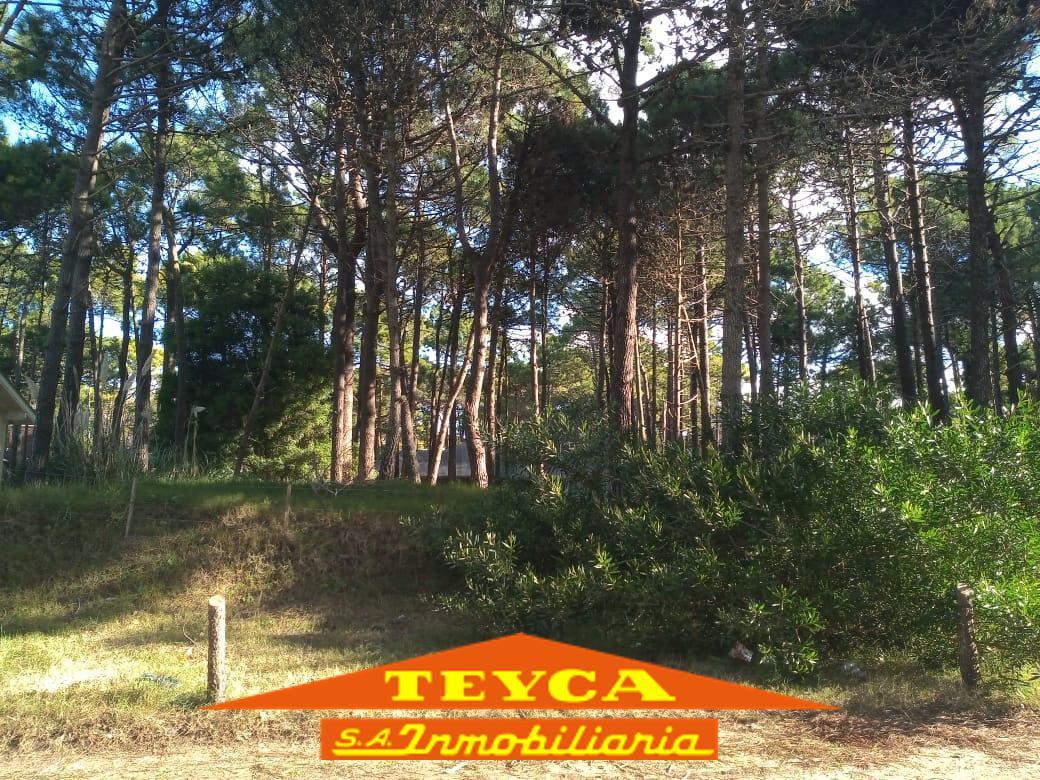Foto Terreno en Venta en  Pinamar Norte,  Pinamar  Itaca e/ Penelope y Helades