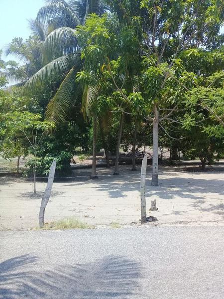 Foto Terreno en Venta en  Ejido Chilpetec Sección Banco,  Paraíso  Terreno en Venta en Chiltepec, Paraíso