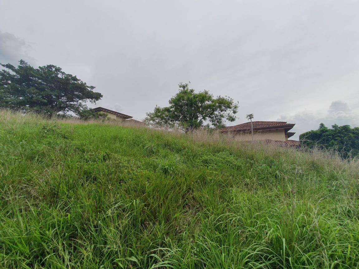Foto Terreno en Venta en  Santa Ana ,  San José  Villa Real / 24 m de frente / Ideal para su casa