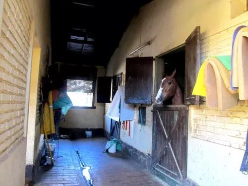 Foto Local en Alquiler en  Acassuso,  San Isidro  Bogota al 900