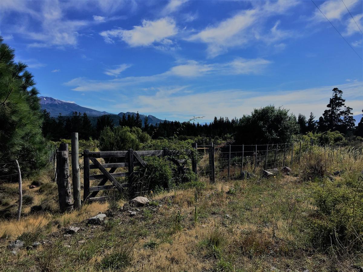 Foto Campo en Venta en  Los Cipreses,  Futaleufu  Ruta Nacional al 200