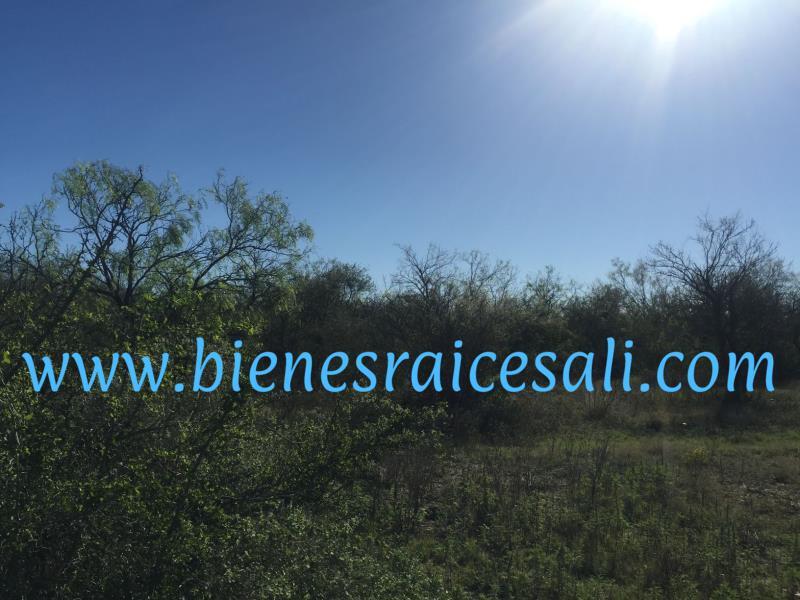 Foto Terreno en Venta en  Piedras Negras ,  Coahuila  Potrero don Luis
