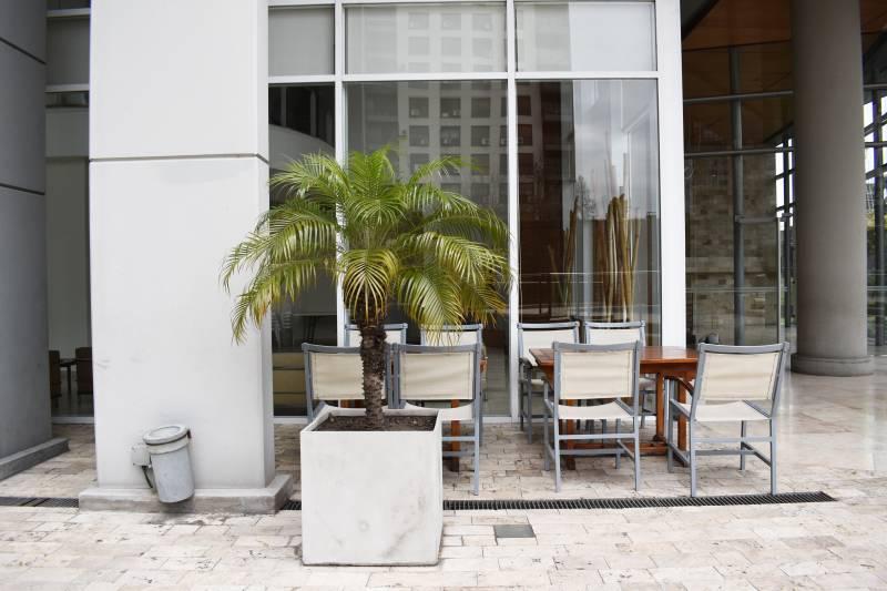 Foto Departamento en Alquiler en  Botanico,  Palermo  Cerviño  al 4700