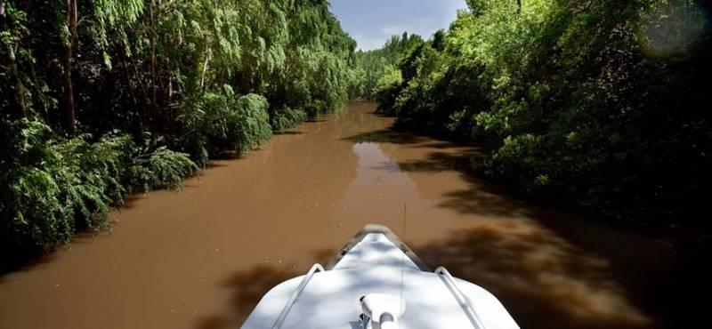 Foto Campo en Venta en  Zona Delta Tigre,  Tigre  Cabañas en el Delta de Tigre