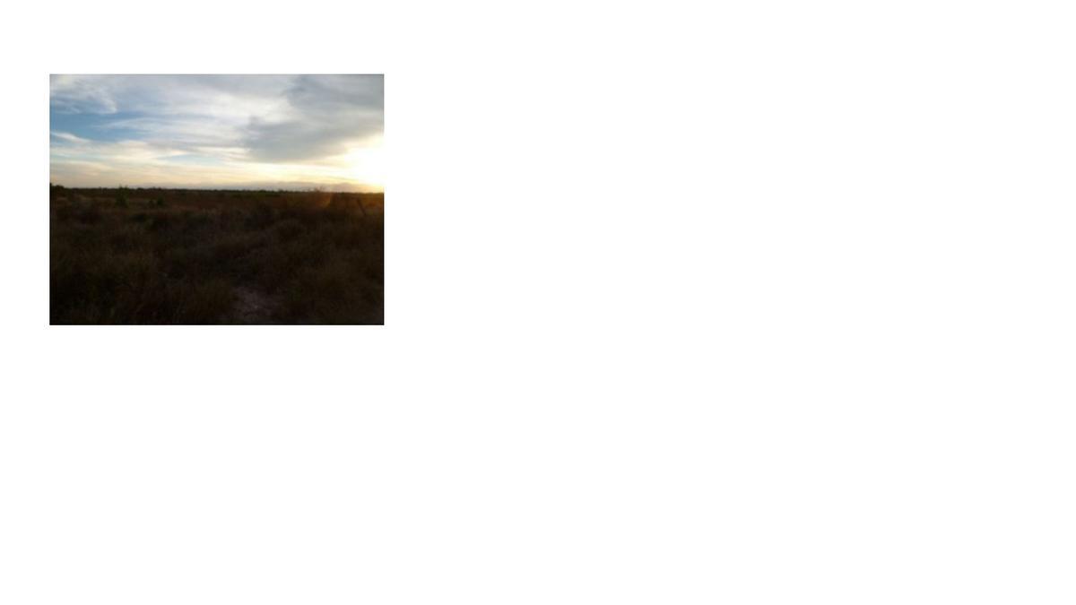 Foto Terreno en Venta en  La Arena,  Pesquería  Terreno en venta 40 hectáreas, Pesquería