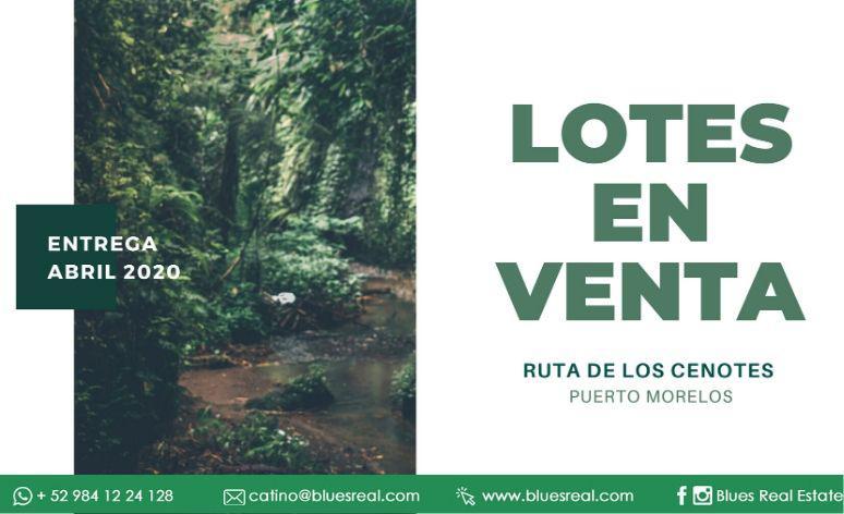 Picture Land in Sale in  José María Morelos ,  Quintana Roo  Lots for sale in Ruta de los Cenotes in Puerto Morelos | Blues Real | Code 953