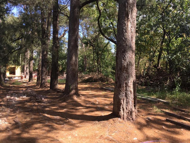 Foto Terreno en Venta en  Barrio Parque Leloir,  Ituzaingo  Av. Udaondo al 3800