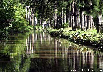 Foto Terreno en Venta en  Dique Lujan,  Tigre  Las Lagunas de Villa La Ñata. Mitre 400. Con salida directa al Rio