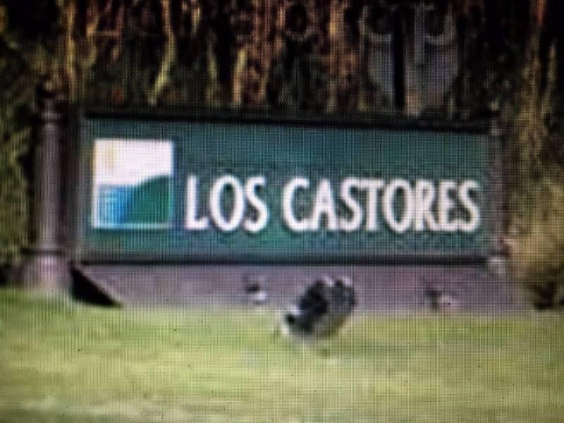 Foto Terreno en Venta en  Los Castores,  Nordelta  Nordelta, Los Castores al 100