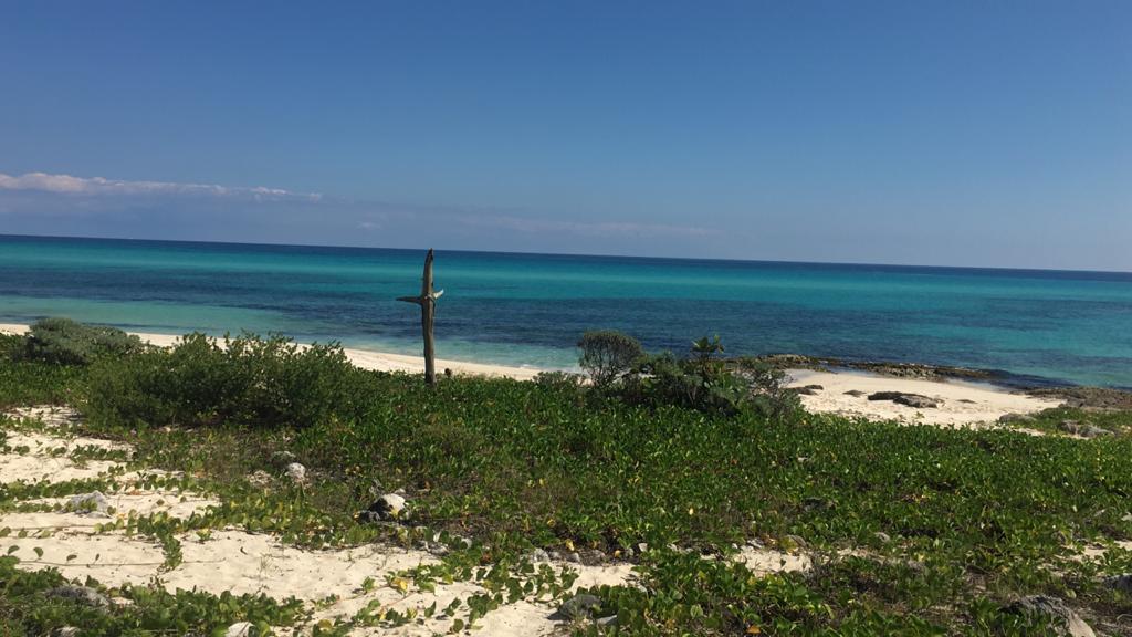 Foto Terreno en Venta en  Playa del Secreto,  Solidaridad  Playa del secreto