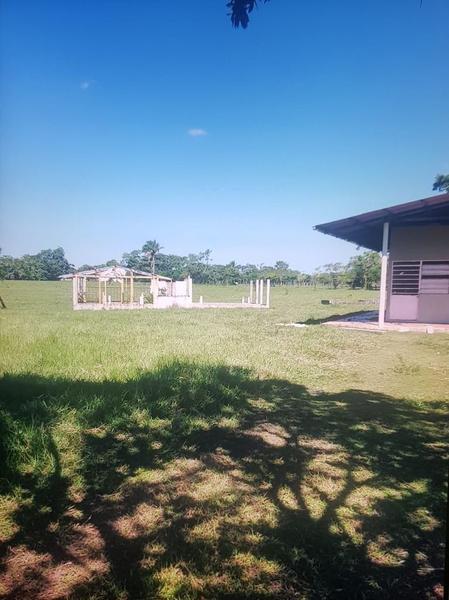 Foto Quinta en Venta en  Ejido Santo Domingo,  Jalapa  Rancho en Venta sobre carretera Villahermosa-Macuspana