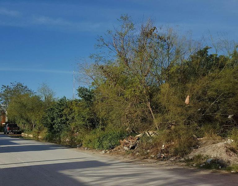 Foto Terreno en Venta en  BurocrAtica,  Reynosa  BurocrAtica