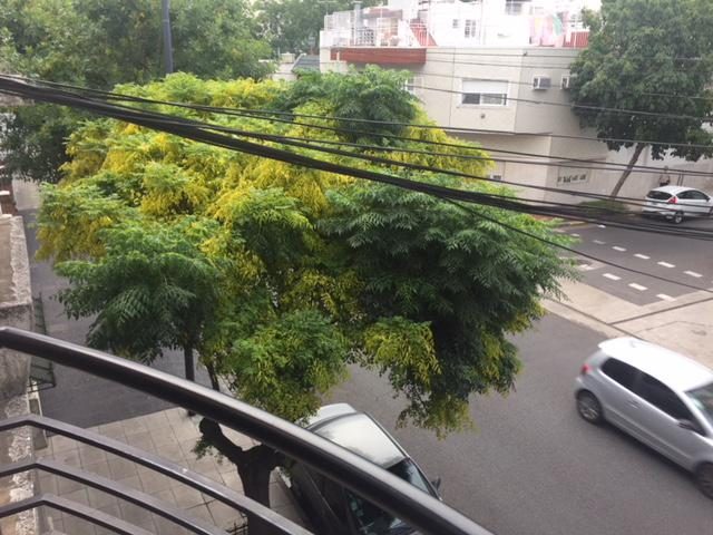 Foto Departamento en Venta en  Almagro ,  Capital Federal  Mexico al 4132