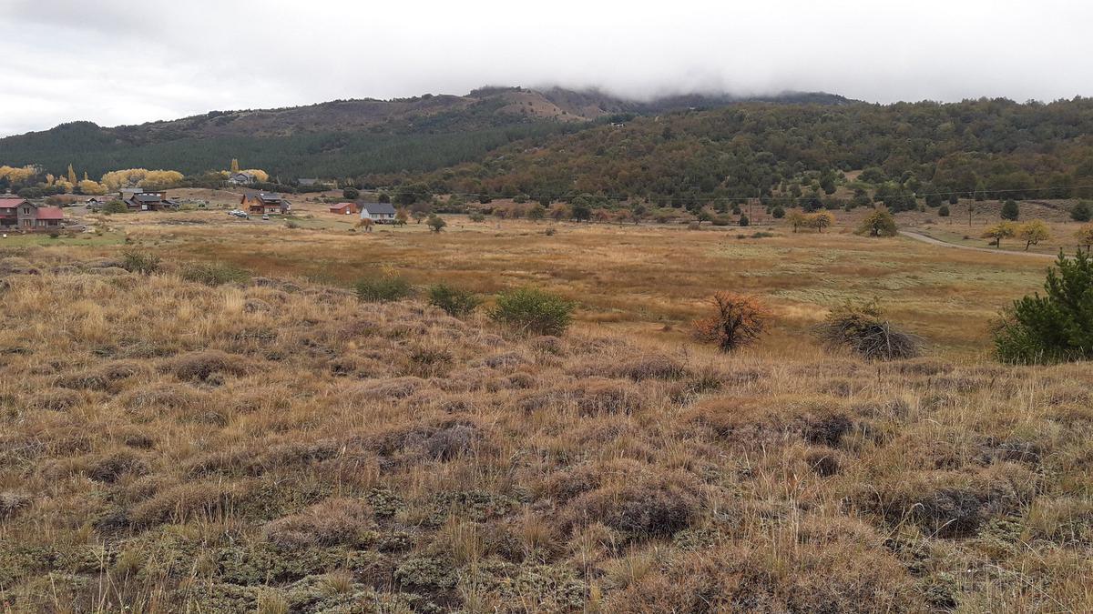 Foto Terreno en Venta en  San Martin De Los Andes,  Lacar  Noregon - Barrio Cerrado
