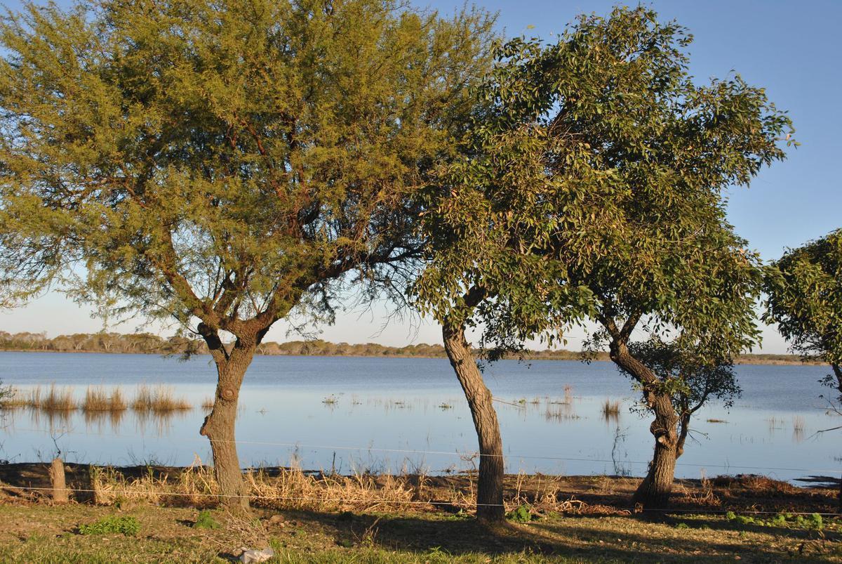 Foto Terreno en Venta en  Arroyo Leyes,  La Capital      Teófilo Madrejón - Ruta Prov. 1 km 16,5 - Lote 3 Manzana D Plano 146950.