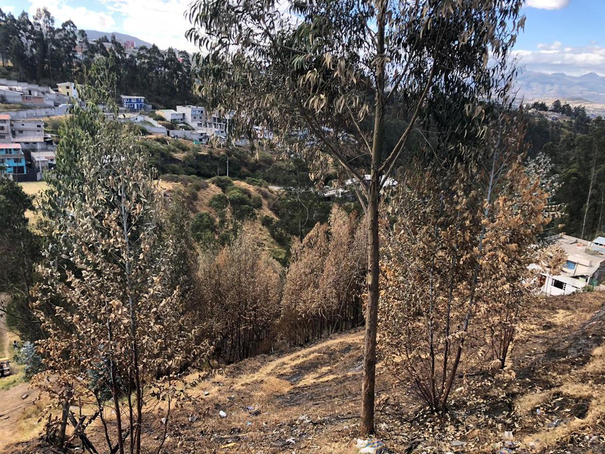 Foto Terreno en Venta en  Amagasí,  Quito    Venta Terreno Amagasi del Inca, Constructores 3.796m2
