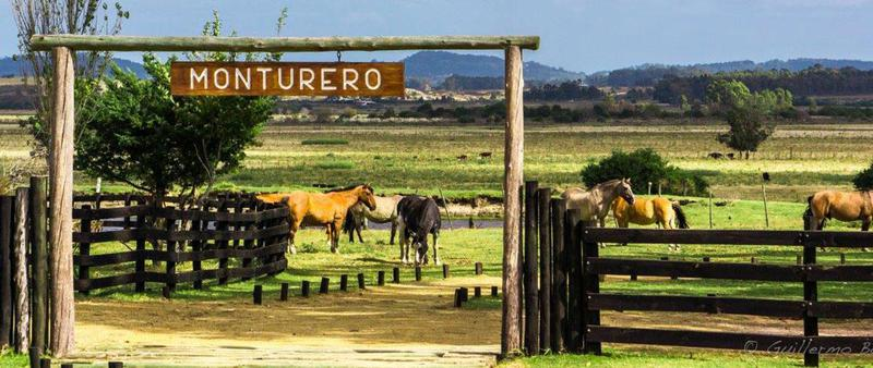 Foto Terreno en Venta en  La Barra ,  Maldonado  Camino del Cerro Eguzquiza.
