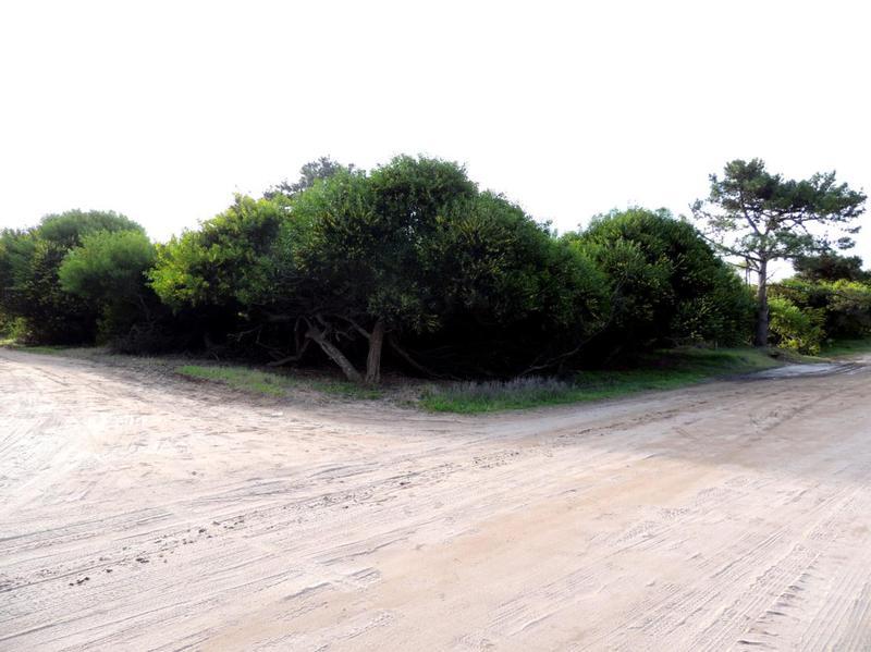 Foto Terreno en Venta en  Las Gaviotas,  Mar Azul  calle 30 y punta del este