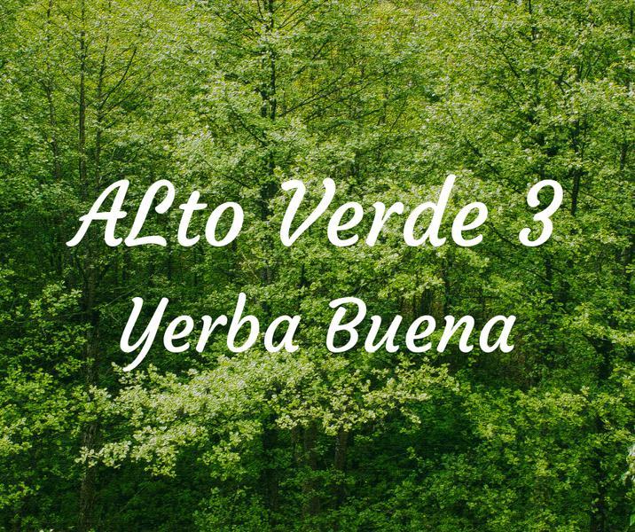 Foto Terreno en Venta en  Av. Peron ,  Yerba Buena  BARRIO PRIVADO ALTO VERDE 3